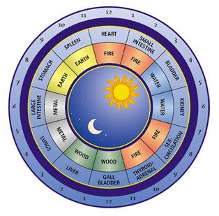 Chinese Medicine 'Meridian Clock'